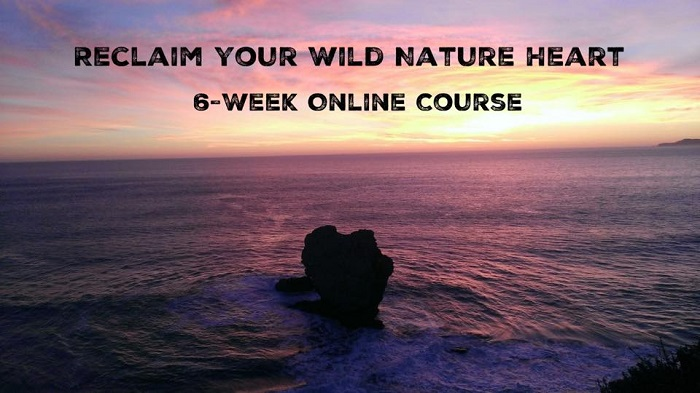 Reclaim Your Wild Nature Heart – 6-Week Online Course